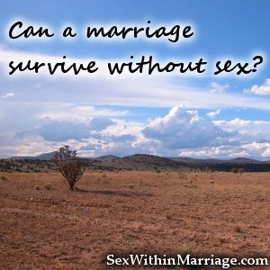 Can a marriage survive without sex