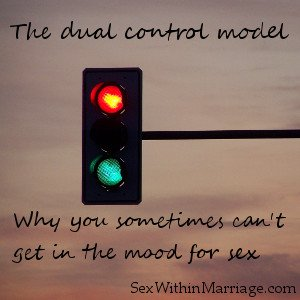 The dual control model - Why you sometimes can't get in the mood for sex